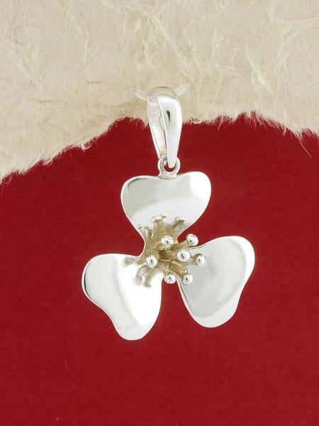 Сребърен медальон - PK300
