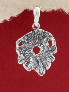 Медальон P15