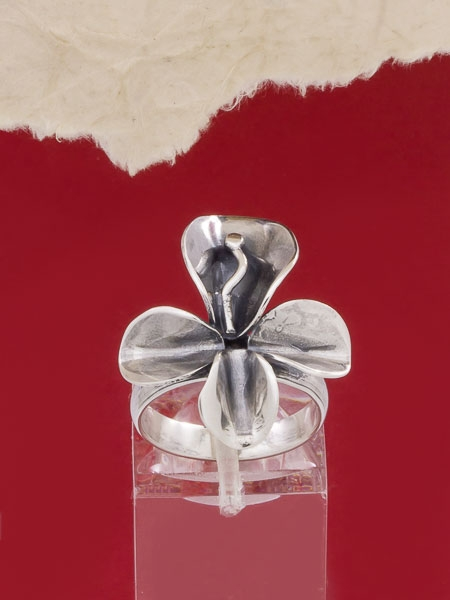 Сребърен пръстен - HR41