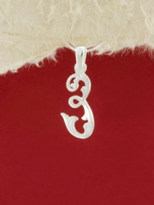 Сребърен медальон буква З - P324