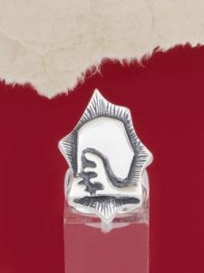 Сребърен пръстен - RK172