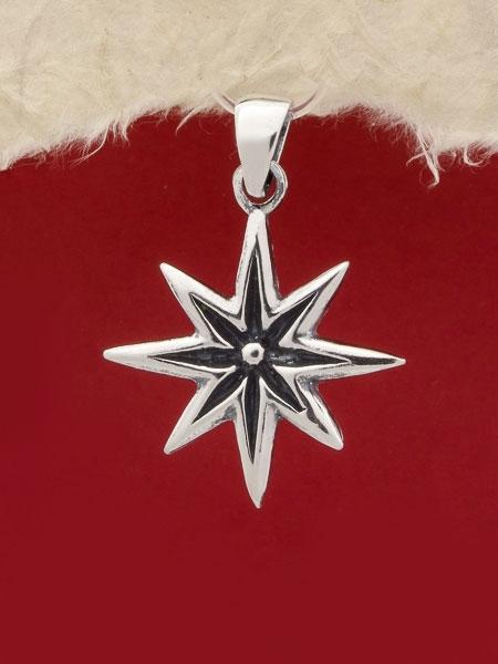 Медальон P61