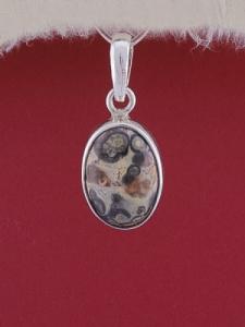 Сребърен медальон PWS24 - Леопардов яспис
