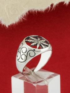 Сребърен пръстрен - R188