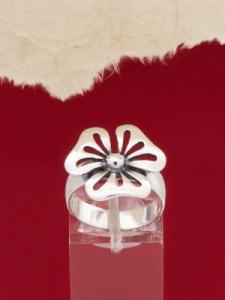 Сребърен пръстен - RK270