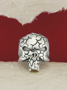 Сребърен пръстен - R162