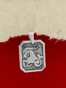 Сребърен медальон - Зодия Козирог