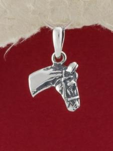 Сребърен медальон - P350