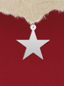 Сребърен медальон - Звезда - GR72