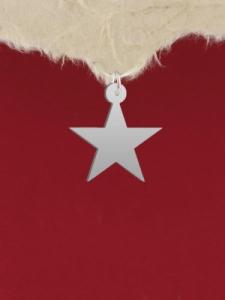 Сребърен медальон - Пентаграм - GR77