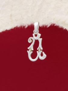 Сребърен медальон буква Й - P324